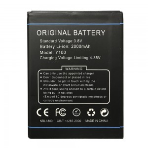 Doogee Y100 - Battery